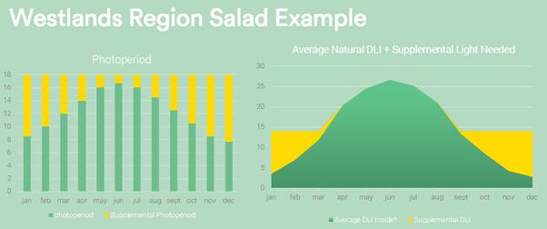 Westlands Salad Example