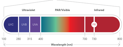 A visual reference showing the colors of light by wavelength